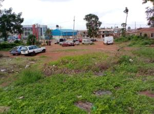 Commercial Land Land for sale Old Ibadan - Ife Express Road, Sawmill, Ibadan  Egbeda Oyo