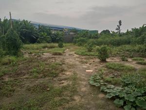 Land for sale Iwofe Road Rumolumeni Port Harcourt Rivers