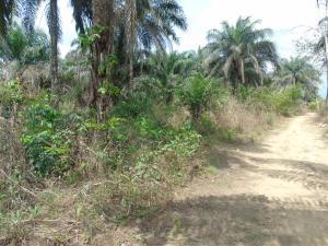 Residential Land Land for sale Etinan Akwa Ibom