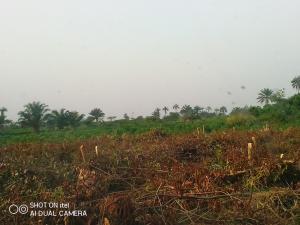 Mixed   Use Land Land for sale Off Shagamu Abeokuta Expressway 15min From Nestle Kajola Obafemi Owode Ogun