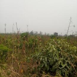 Industrial Land Land for sale Shagamu Exchange Bridge, Ibadan Expressway Sagamu Sagamu Ogun