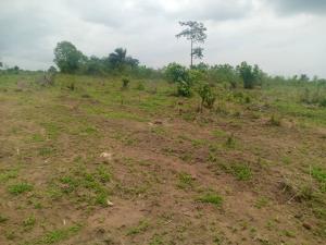 Land for sale  Ido, Ibadan.  Ibadan Oyo