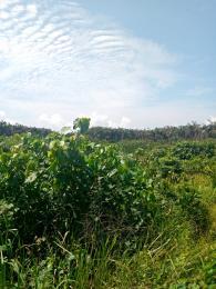 Residential Land for sale Ajayi Apata Sangotedo Ajah Lagos