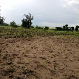 Commercial Land for sale Okaka Village Near Iseyin Town Off Saki Road, Oke Ogun Iseyin Oyo