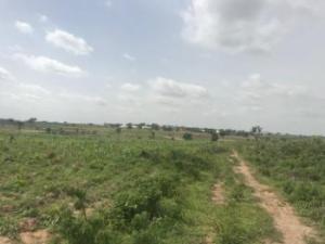 Commercial Land Land for sale Dape Abuja