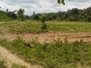 Commercial Property for sale Mafoluku MM1 Airport Road(Ikeja) Ikeja Lagos