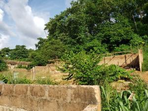 Residential Land Land for sale Diamond Estate, off New Market Road Enugu Enugu