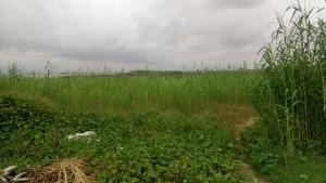 Residential Land Land for sale Off Epe Expressway, By Lagos Business School (LBS) Lekki Phase 2 Lekki Lagos
