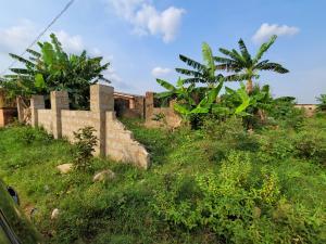Mixed   Use Land Land for sale Ebvuoriaria, Off Sapele Road, Benin City  Oredo Edo