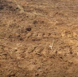 Mixed   Use Land Land for sale Ilasan Lekki Lagos