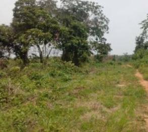Industrial Land Land for sale Police station.  Akpabuyo Cross River