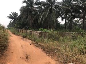 Mixed   Use Land Land for sale Sapele Road Oredo Edo
