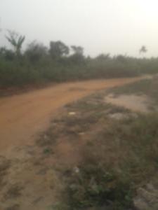 Land for sale Anyanganse akpabuyo cross river Akpabuyo Cross River