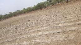 Land for sale Apase Luxury,phase23 Jukwoyi,gra Abuja Jukwoyi Abuja
