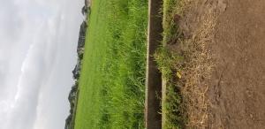 Mixed   Use Land Land for sale Around Alausa Ikeja Lagos  Alausa Ikeja Lagos