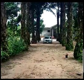 Mixed   Use Land Land for sale Nvuigwe, Woji, Port Harcourt. Obio-Akpor Rivers
