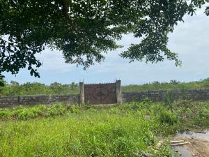 Mixed   Use Land Land for sale Urban Prime Estate Ogombo Ajah Lagos