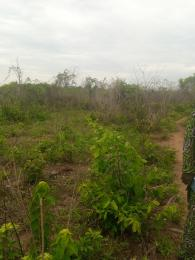 Mixed   Use Land for sale Asipa Town Papalanto Ewekoro Ogun