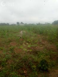 Land for sale Okuju new site, behind Lagos state Rice demonstration Badagry Badagry Lagos