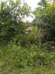 Mixed   Use Land Land for sale Beside Alaro City, Km 7, Lagos Epe Express Way, Ibeju Lekki Free Trade Zone Ibeju-Lekki Lagos