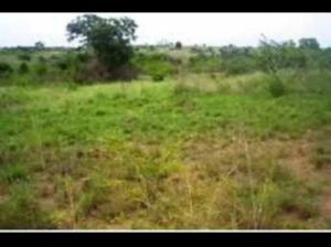 Mixed   Use Land Land for sale Hu Orile-Iganmu Surulere Lagos