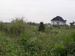Land for sale Nwobi str, by Elemu Bus stop Bucknor Isolo Lagos