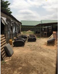 Residential Land Land for sale Off Ogudu road Ogudu Ogudu Lagos