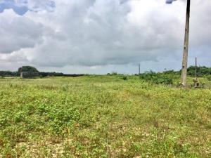 Residential Land Land for sale chevron Lekki Lagos