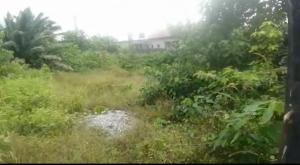 Residential Land for sale Goodnews Estate Sangotedo Lagos