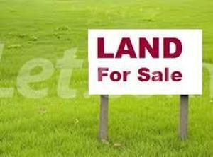 Land for sale Lekki Palm City Estate, Thomas estate Ajah Lagos