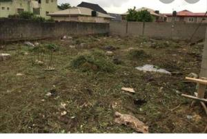 Land for sale Northern foreshore chevron Lekki Lagos