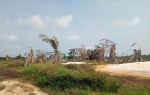 Land for sale Northern Foreshore Estate chevron Lekki Lagos