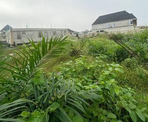 Residential Land Land for sale Oakland Estate Sangotedo Ajah Lagos