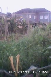 Mixed   Use Land Land for sale OMOLE PH.2,EXTENSION........ Berger Ojodu Lagos
