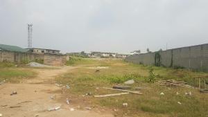Open Space for sale Beside zenith bank ,ipakodo road Ipakodo Ikorodu Lagos