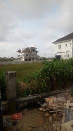Residential Land Land for sale Lake Victoria street, LakeView Park 1 estate, opposite Ikota shopping complex Ikota Lekki Lagos