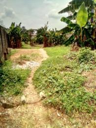 Residential Land Land for sale - Anthony Village Maryland Lagos