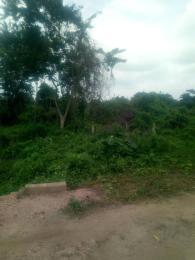 Mixed   Use Land for sale Iwo Rd Ibadan Oyo