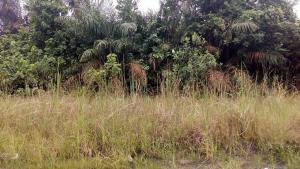 Land for sale Diamond Estate Phase 2 Sangotedo Lagos