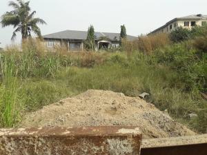 Mixed   Use Land Land for sale Crown Estate Ajah Lagos