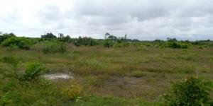 Commercial Land Land for sale bakare estate Agungi Lekki Lagos
