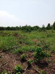 Residential Land Land for sale Awuse estate Opebi Ikeja Lagos