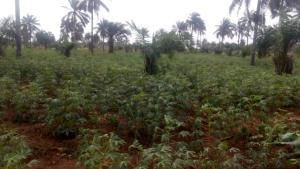 Land for sale Lusada Agbara Agbara-Igbesa Ogun