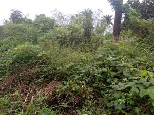 Commercial Property for sale Ajeja , Between Alabata And Ijaye Akinyele Oyo