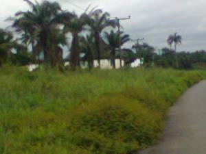 Land for sale Omuagwa Along Airport Road, New Layout Port Harcourt Rivers