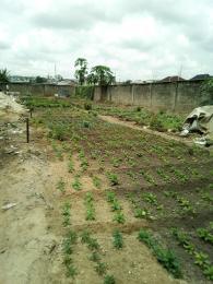 Residential Land Land for sale Ogudu GRA phase 2 Ogudu GRA Ogudu Lagos