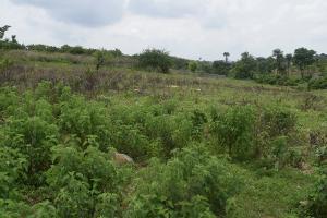 4 bedroom Residential Land Land for sale ministry of justice housing estate, karsana district Karsana Abuja