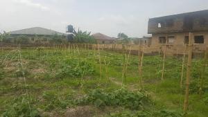 Residential Land for sale Off Lion Power Road Orimerunmu Village , Behind Nasfat By Total Filling Station, Before Redemption Camp Arepo Ogun
