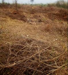 Commercial Land Land for sale - Akure Ondo