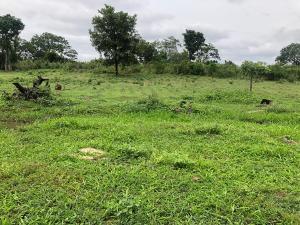 Residential Land Land for sale Aleniboro oke odò tanke Ilorin  Ilorin Kwara